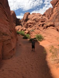 Valley of fire shade Los Vegas