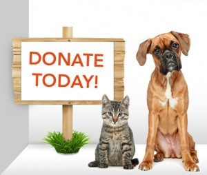 Donate to the community pet food drive